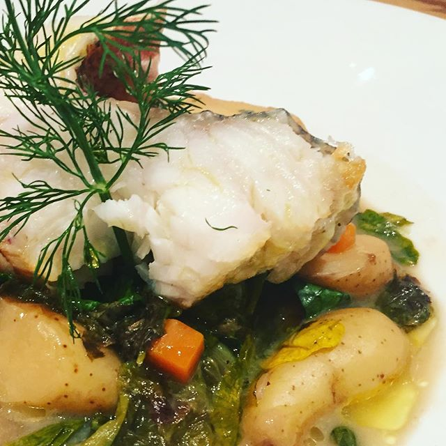 Ever heard of Kingklip? Flaky, moist and succulent, similar in sweetness and texture to grouper, and sustainably sourced from New Zealand, we think you'll love it. Today's special at Kellari NYC. @kellariny #foodies #sustainableseafood #nycrestaurants #greekfood #mediterraneanfood #sustainablerestaurant #fish