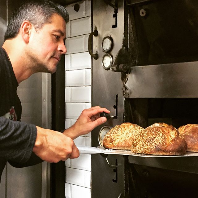 Sprouted grains become a plant and are easier to digest. They also taste sweeter, creamier. Add some seeds and you have an umami bomb. Sprouted breads are the next food revolution. That's why I bake with sprouted grains.  #sproutedgrains #petersbread @demetraorganics #zealifegiving #ancientgrains #greekfood #peterreinhart