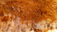 Recipe: Baked Grouper with Whole Wheat Panko Bread Crumbs