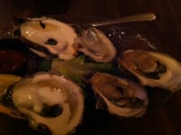 cc oysters